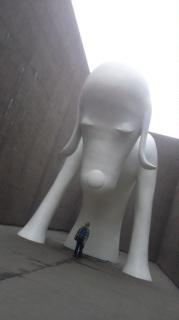 青森犬・・・